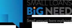 Small Loans Big Needs